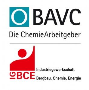 LogoBAVC_08_IGBCE