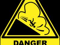 EU-Chemikalienstrategie – sicher und nachhaltig auf dem Holzweg?